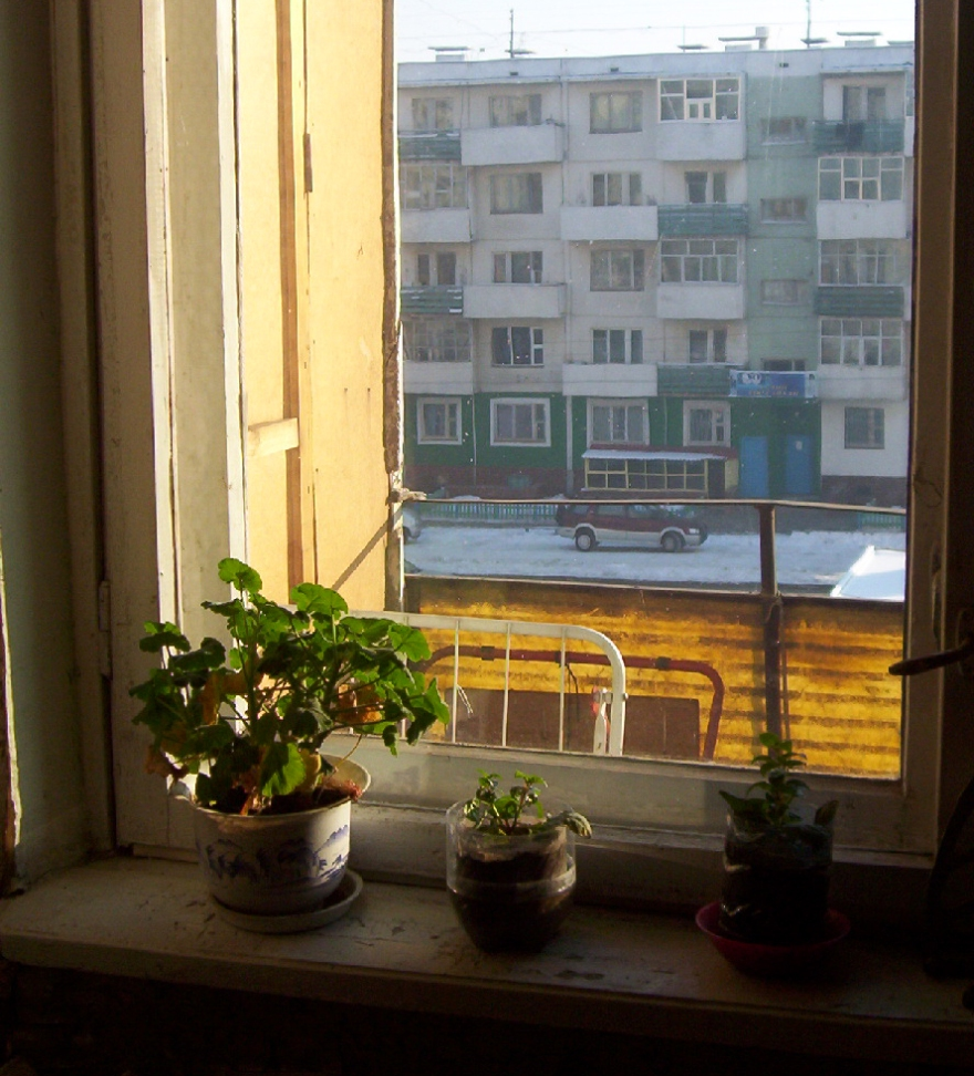 parched-plants-100_0714