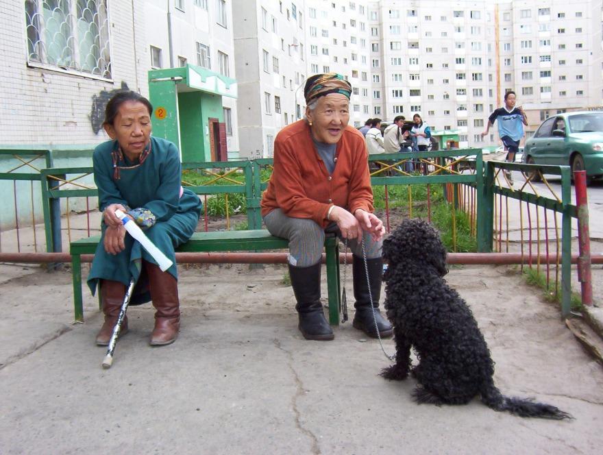 Old ladies & dog
